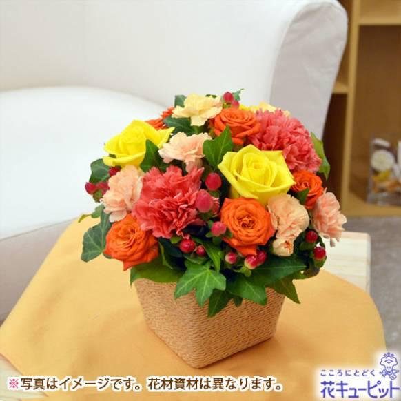 静岡 市 生花 店